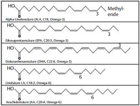 Omega 3 Fettsäuren Diagnostik Und Therapie Bei Krebs Dr Schmiedel