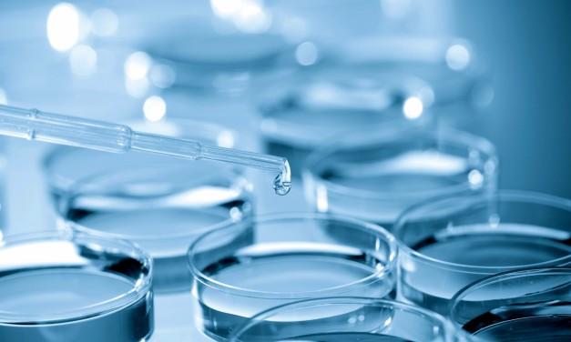 Omega-3-Fettsäuren: Diagnostik und Therapie bei Krebs