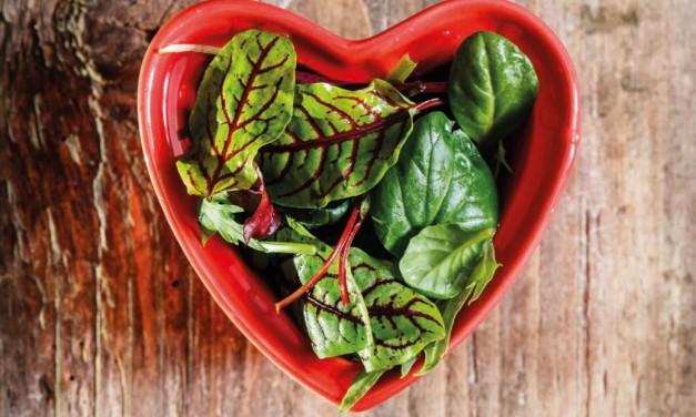 KHK Koronare Herzkrankheit – Ernährung