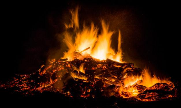 Entzündungen – Feuer in unserem Körper