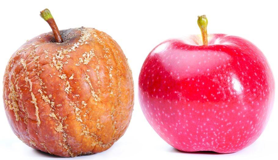Von Äpfeln und Studien – warum nicht nur Äpfel, sondern auch Meta-Analysen faul sein können