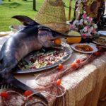 Schwertfische – schön, aber schadstoffbelastet – gehören ins Meer und nicht auf den Teller