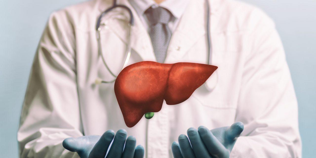 Behandlungsmöglichkeiten der Volkskrankheit Fettleber