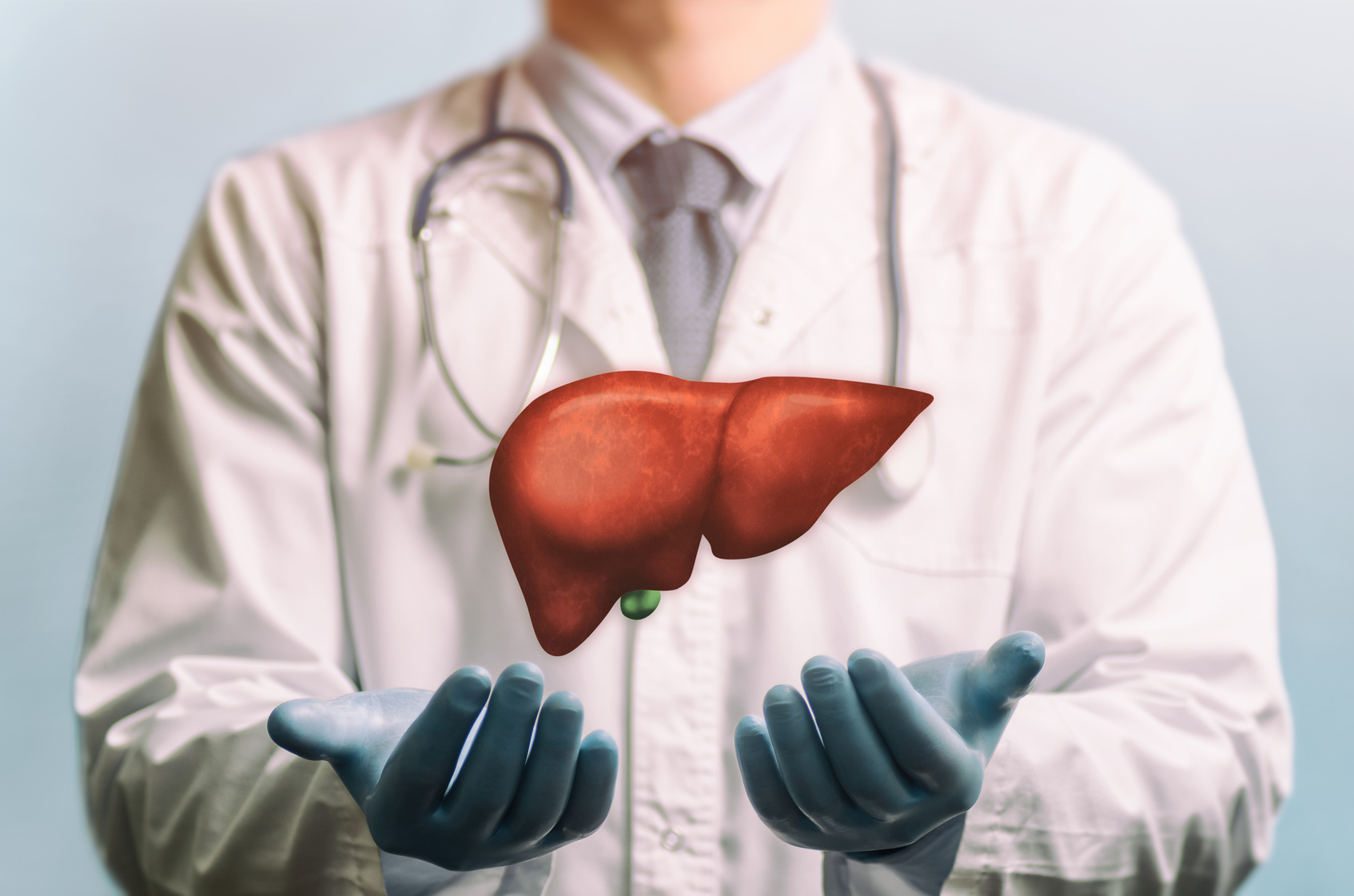 Fettleber- und Cholesterin-Diät